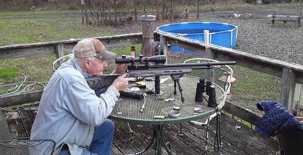 daddy shooting discorod
